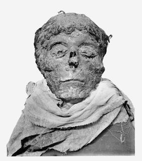 File:The mummified head of Ahmose I.png