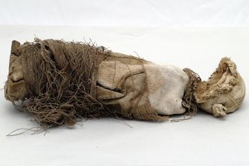 File:Mummified-fetus.jpg