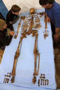 Senebkays-skeleton