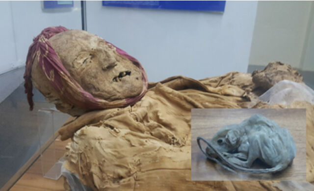File:Mummy-guano-0.jpg