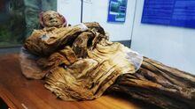 Mummy 7