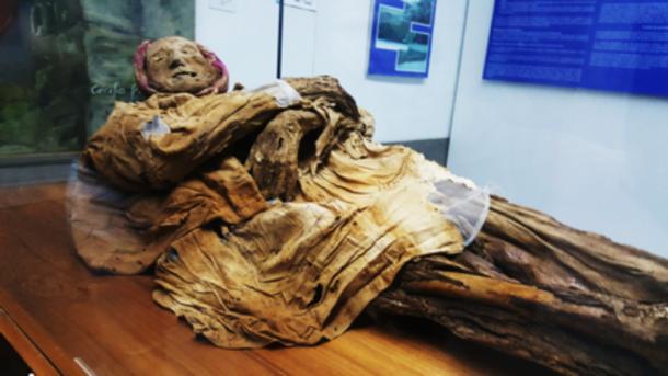 File:Mummy 7.jpg