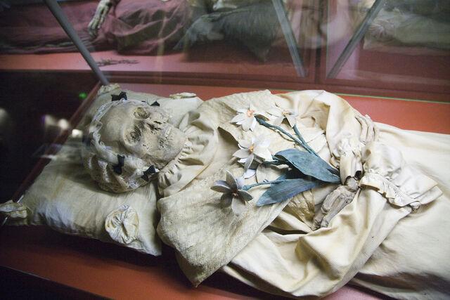 File:Mummy-of-Terézia-Hausmann.jpg
