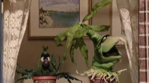 Sesame Street Desperate Houseplants