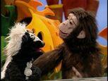 Episode 201: Chimpanzee & Hyena