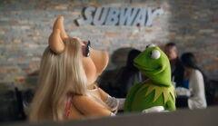 Subway pig frog