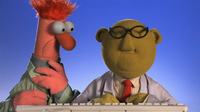 Muppets-com35
