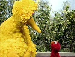 ElmoBigBird.sad