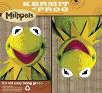 Kermit the Frog 2011 Calendar