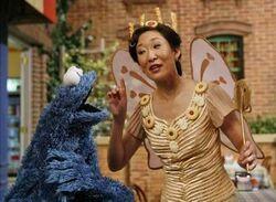 Sandra Oh the Cookie Fairy