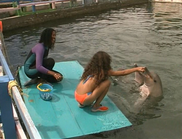 File:GirlDolphins.jpg