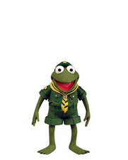 Frog Scout Robin Action Figure
