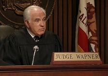 Judgewapner