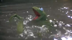 KermitSwimmingTMM