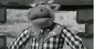 Lash Holstein