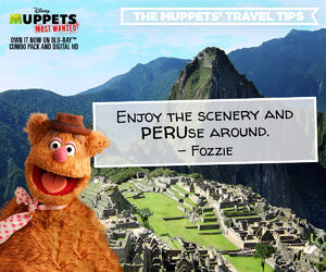 Travel Tips Machu Picchu