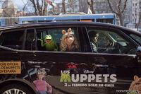 LosMuppets-Madrid-Spain-(2012-01-23)-02