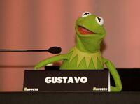 LosMuppets-Madrid-Spain-(2012-01-23)-06