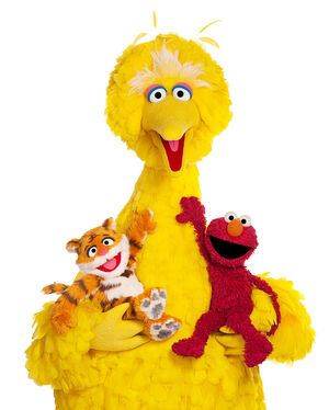 Big bird lily elmo
