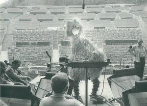 Big BIrd Hollywood Bowl 1977