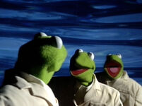 Kermit clone Once in a Lifetime