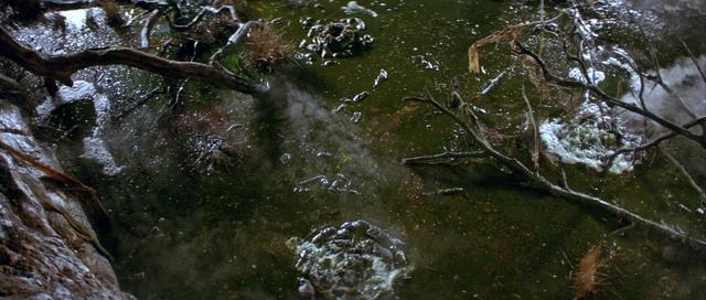File:Bog of Eternal Stench 01.png