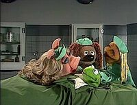 TMS.410.VetsHospital