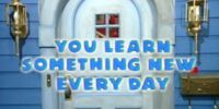 Episode 206: You Learn Something New Every Day