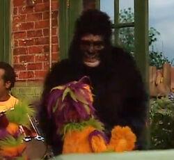 Gorilla-SesameEnglish