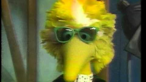 Sesame Street Live Buffalo 1987
