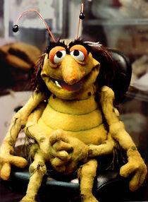 Muppet-bug
