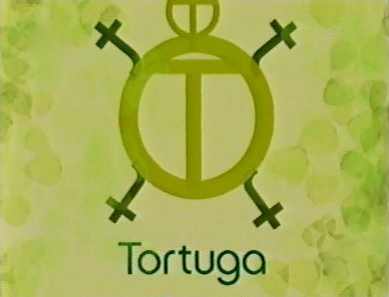 File:TortugaShell.jpg