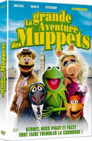 File:New tgmc french dvd.jpg