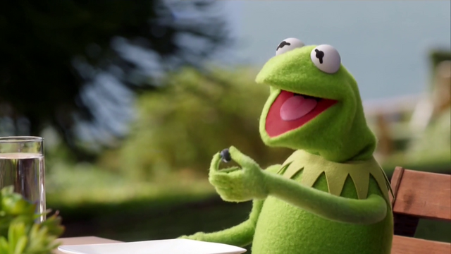 File:TheMuppets-S01E07-BlueberryKermit.png