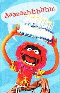 Animalcard2008
