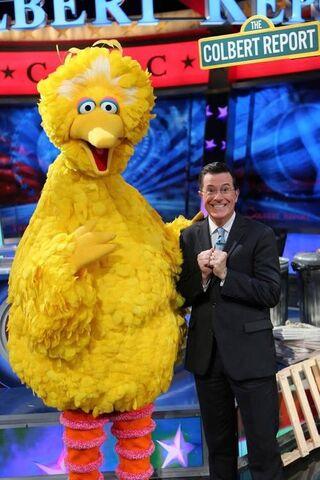 File:Colbert-BigBird.jpg
