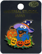 Halloweencookiepin
