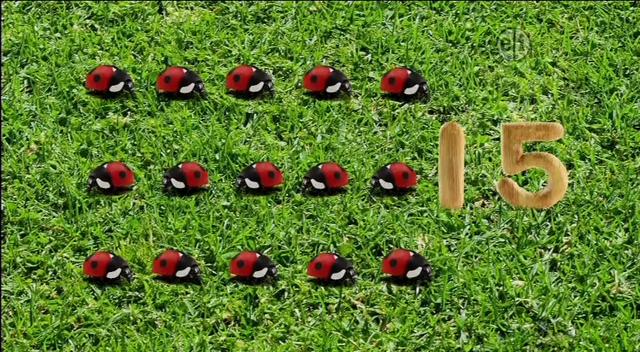 File:15-Ladybugs.png