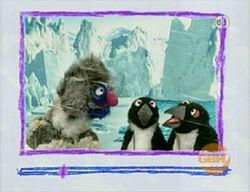 Ewpenguins-grover