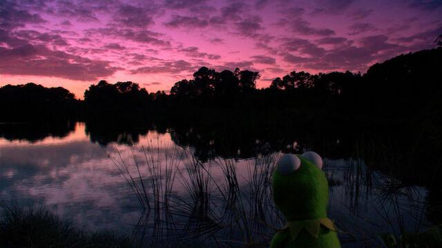 File:KSY-NightSwamp.jpg