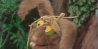 The March Hare (Muppet Show)