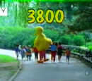 Episode 3800