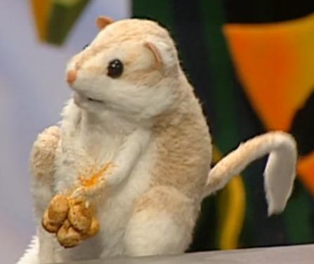 File:Cool the Kangaroo Rat.png