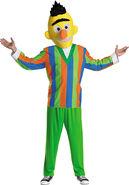 Adult Bert-Costume