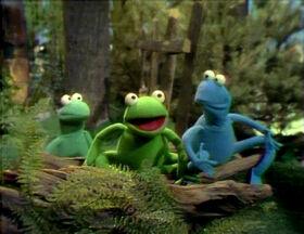 Frog Chant