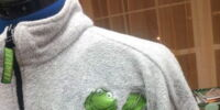 Muppet sweatshirts (Jerry Leigh)
