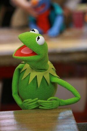 Kermit3