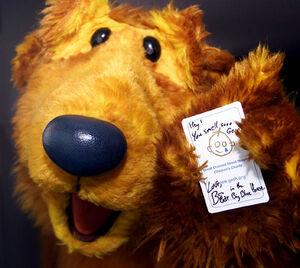 Bear-autograph