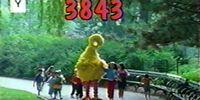 Episode 3843