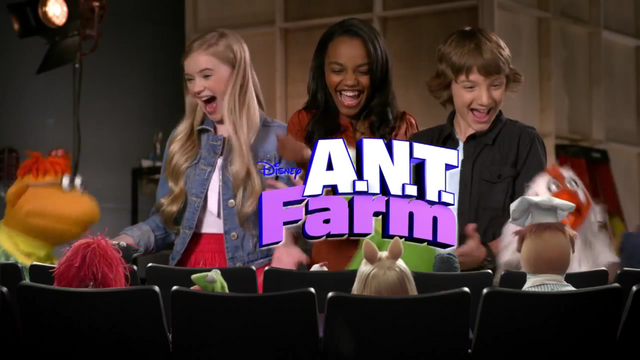 File:Muppets ANT Farm.png